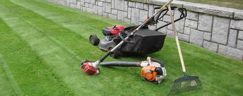 Spring garden tasks: Reasons to get outside