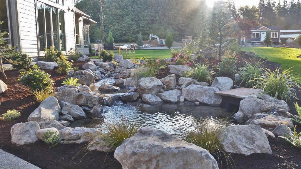 Rock Pond Babbling Brook 2