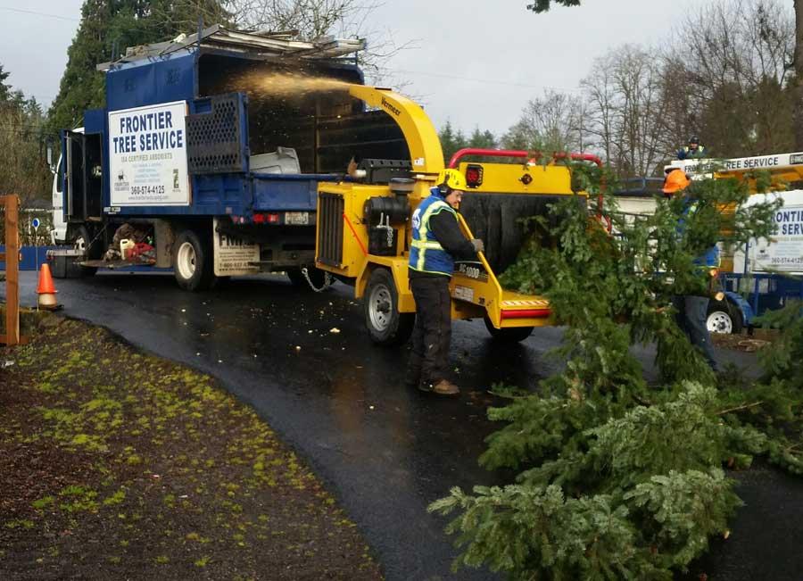 tree mulching training