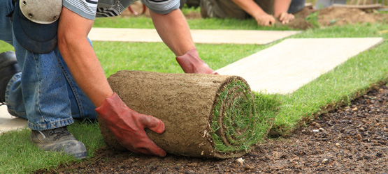 residential front yard installation - sod
