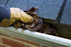 gutters, clean out gutters